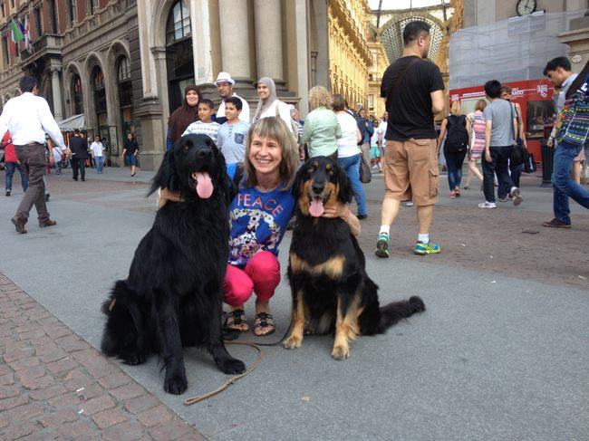 Harley Sun et Grouchenka Sun des Leus Altiers à Milan, 2015 5