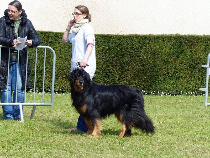 Sunia Las Ksieznziczeki 9_tn