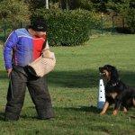 Sunia_rci_2009-07-11_2-tn