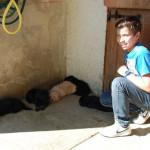 J4 des Leus Altiers 2014-09-27 5_tn