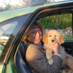 Jasper des Leus Altiers 2014-11-10 6-tn