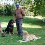 Athos du Clos Chalandré et Ivane des Leus Altiers 2014-10-17 9-tn