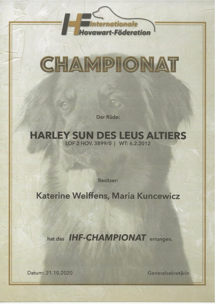 Harley Sun des Leus Altiers IHF-Ch
