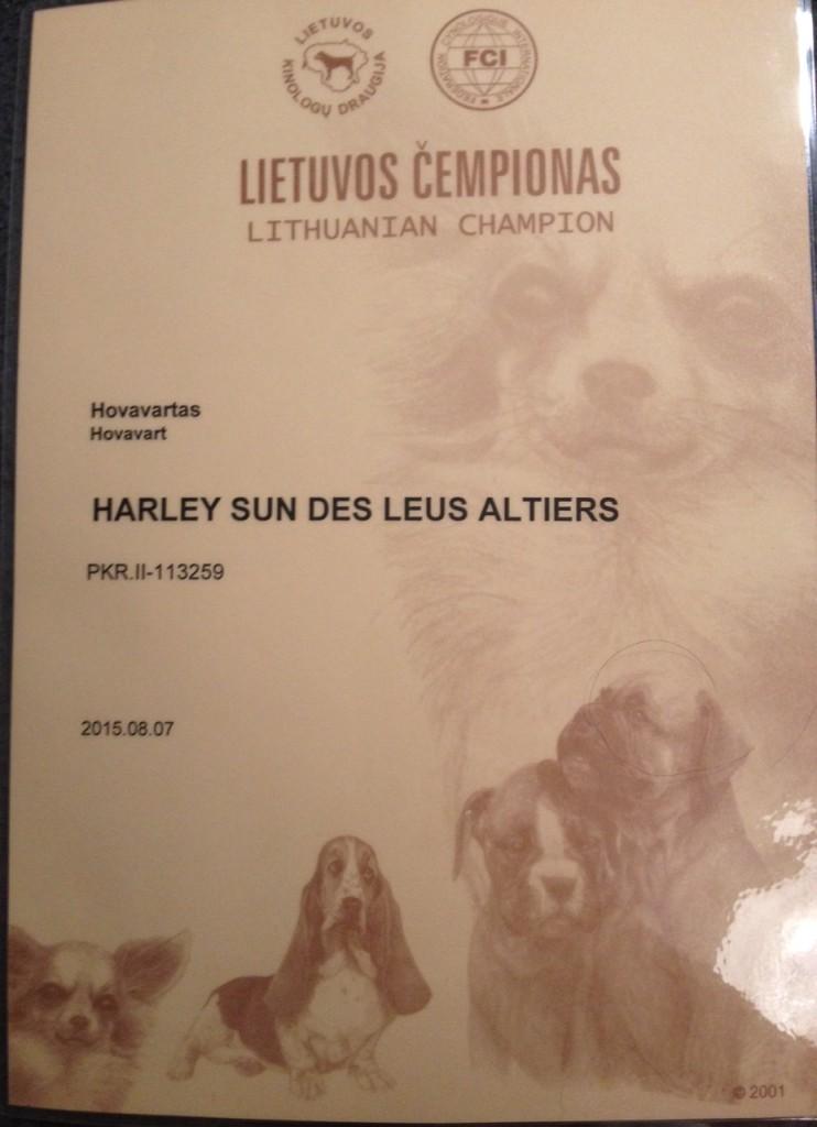 Harley Sun des Leus Altiers Ch Lituanie_edited