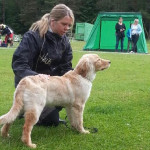 Ismay_show_Sweden_1_2013-06-16_edited
