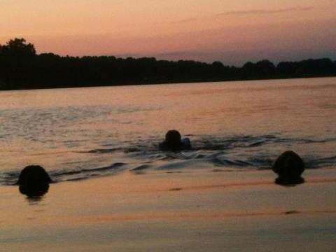 Izzi, Kiera och Elin simmar i Strömsholm 20150706 Evening swim summer 2015
