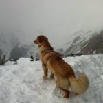Halleys_Comet_Sun_neige-tn