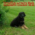 glinka_31_MAI_2011_002-tn