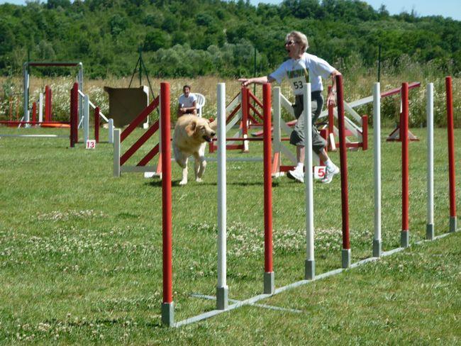Cayros agility 2010-07, 5-tn