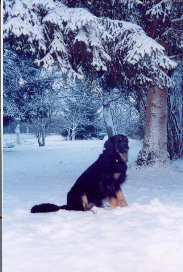Urok_neige_02_2004