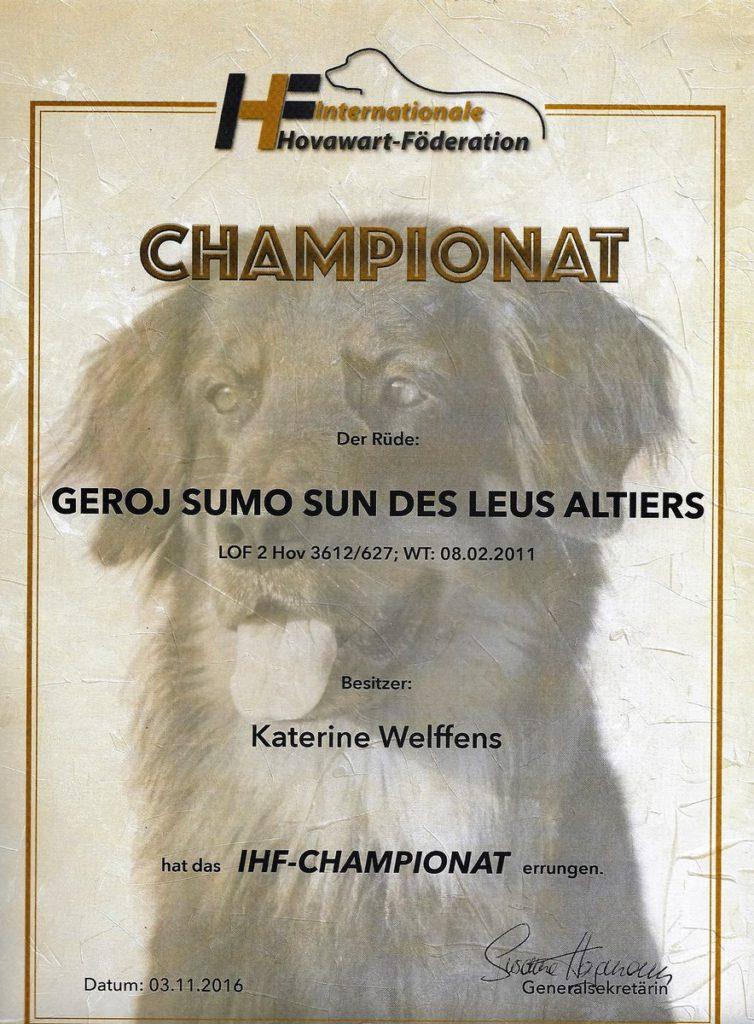 geroj-sumo-sun-des-leus-altiers-ch-ihf_tn