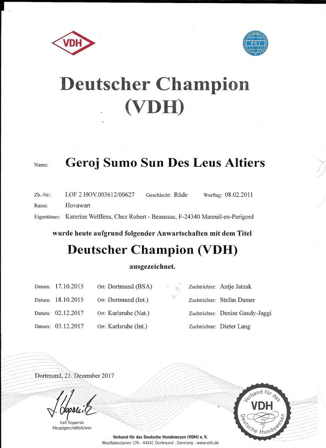 Geroj Sumo Sun des Leus Altiers Deutscher Champion VDH_tn