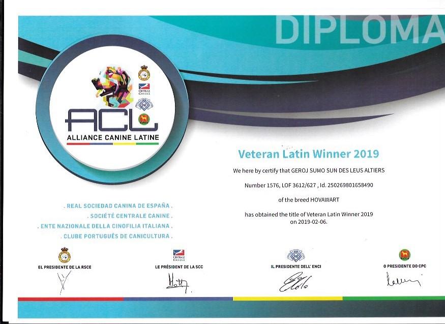Geroj Sumo Sun des Leus Altiers Latin Winner Veteran