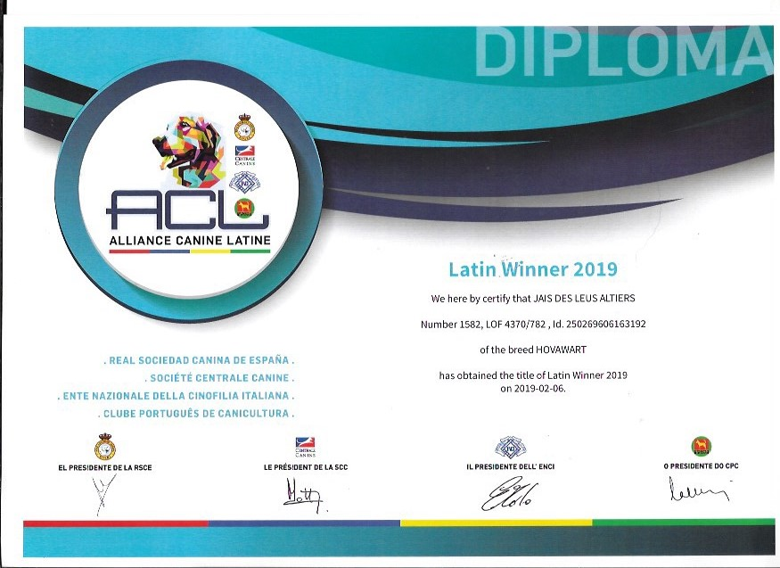 Jais des Leus Altiers Latin Winner 2019