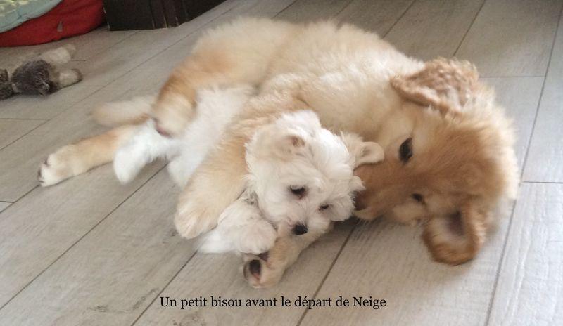 N'Jie des Leus Altiers 2017-07-30_tn