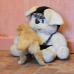 Princesse Froh Miya des Leus Altiers 2020-01-09 8_tn
