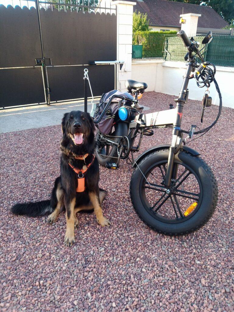 Phlambix Ishtar des Leus Altiers vélo